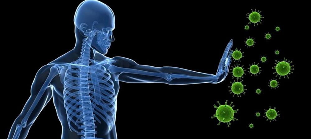 sistema-inmune